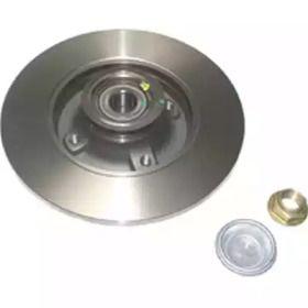 Задний тормозной диск 'BIRTH 3399'.