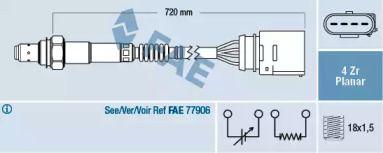 FAE 77204