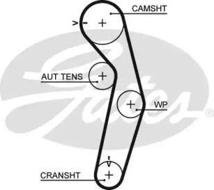 Ремінь ГРМ на Мітсубісі Карізма 'GATES 5441XS'.