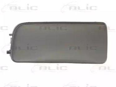 BLIC 5513-00-0060925P