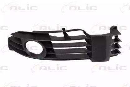 Решетка бампера на VOLKSWAGEN PASSAT BLIC 6502-07-9539993P.