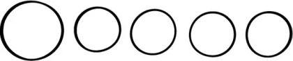 Комплект прокладок, впускной коллектор на Опель Инсигния VICTOR REINZ 11-38221-01.